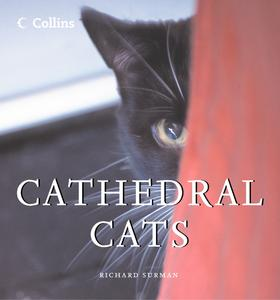 Cathedral Cats - eBook