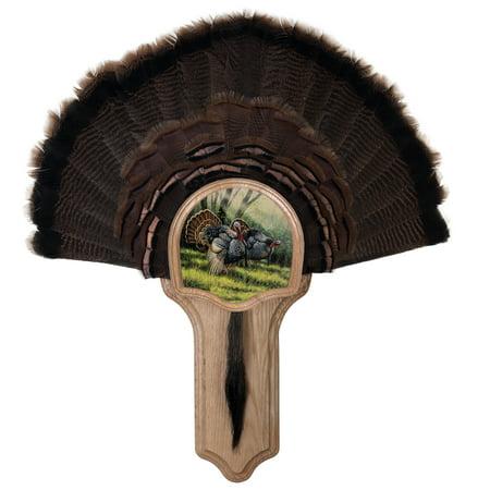- Walnut Hollow Country Deluxe Turkey Fan Kit, Oak Featuring Spring Strut Image