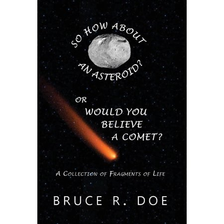 So How About An Asteroid  Or Would You Believe A Comet   A Collection Of Fragments Of Life