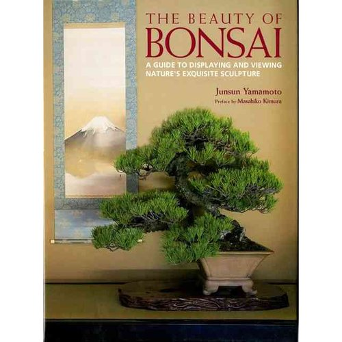 The Beauty of Bonsai: A Guide to Displaying and Viewing Nature's Exquisite Sculpture