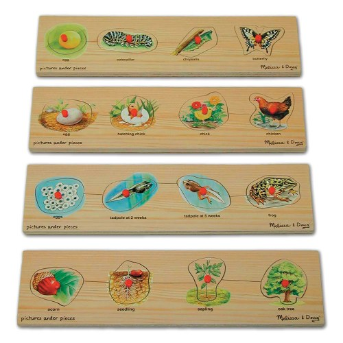 Life Cycle Peg Puzzle Set (Set of 4 puzzles)