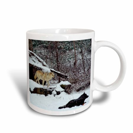 3dRose 2 Rocky Mountain Wolves, Ceramic Mug, 11-ounce