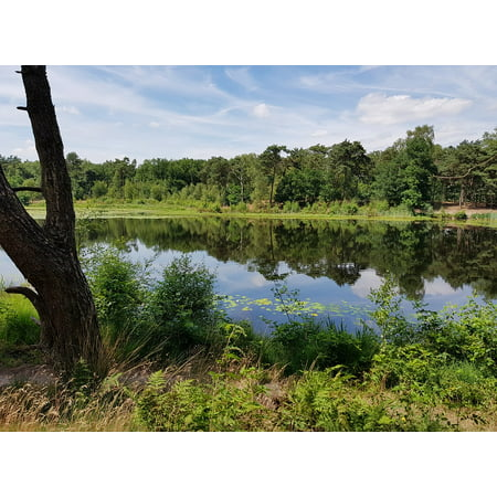 Canvas Print Camping Pond Landscape Relax Nature Peaceful Stretched Canvas 10 x 14 (Peaceful Pond)