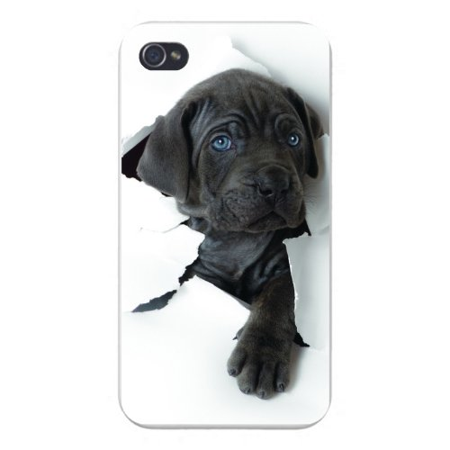 super popular 86d43 3c3af Apple Iphone Custom Case 4 4s White Plastic Snap on - Black Lab Puppy Dog  Cute Ripping White Paper