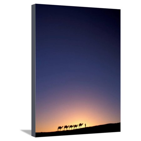 Camel Caravan Silhouette at Dawn, Silk Road, China Stretched Canvas Print Wall Art By Keren Su