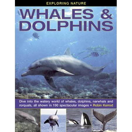 Exploring Nature: Whales & Dolphins : Dive Into the Watery World of Whales, Dolphins, Narwhals and Rorquals, All Shown in 190 Spectacular