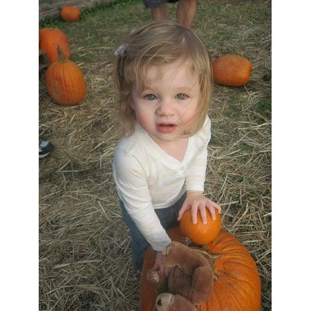 October Photo A Day Halloween (LAMINATED POSTER Kids October Pumpkins Halloween Autumn Fun Poster Print 24 x)