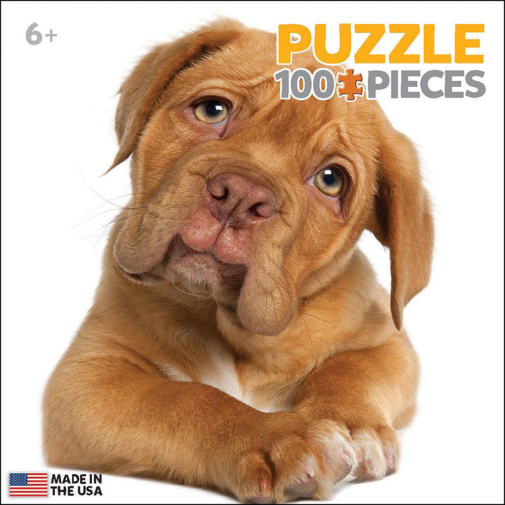 Puppy Mini 100 Piece Puzzle,  Cute Puppies by Eurographics