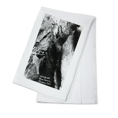 Ouray, Colorado - Interior View of Box Canon Photograph (100% Cotton Kitchen Towel)