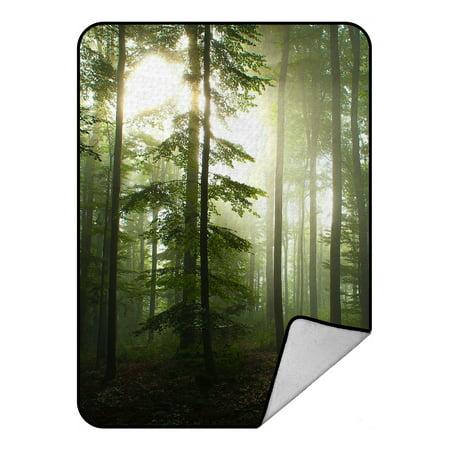 GCKG Sunshine Forest Fleece Blanket Throw Blanket 58x80inches - image 4 of 4