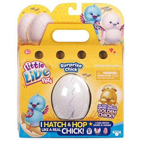 Little Live Pets Surprise Chick - Beaky