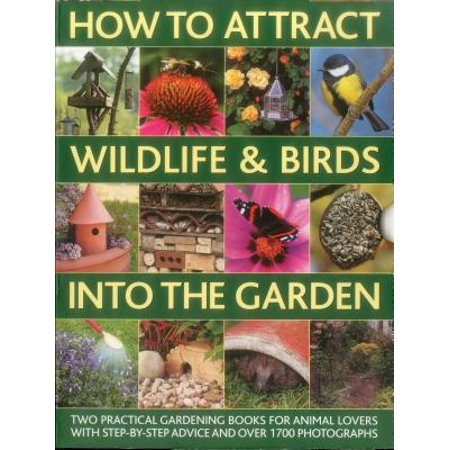 Wild Place Project Halloween (How to Attract Wildlife & Birds Into the Garden : A Practical Gardener's Guide for Animal Lovers, Including Planting Advice, Designs and 90 Step-By-Step Projects, with 1700)