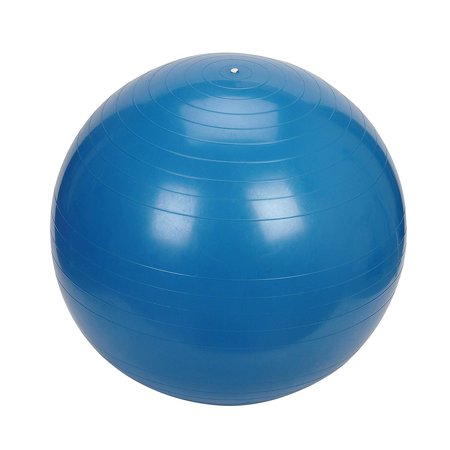 Sunny Health & Fitness Exercise Ball, 55 CM Sunny Health & Fitness Exercise Ball