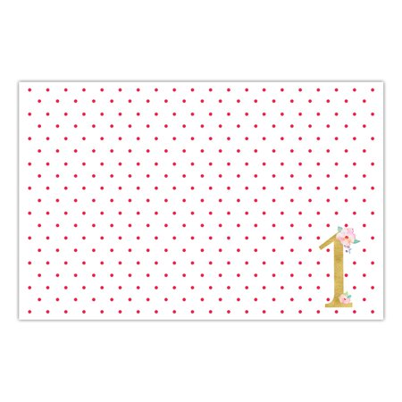 DB Party Studio Paper Placemats Pack of 25 Sweet Baby Girl First 1st Birthday Celebration Disposable Table One Year Old Daughter Children Parties Little Kids Place Setting Decor 17