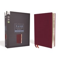 Nasb, Thinline Bible, Large Print, Bonded Leather, Burgundy, Red Letter Edition, 1995 Text, Comfort Print (Other)(Large Print)
