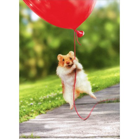 Avanti Press Hamster Heart Balloon Valentine's Day Card](Valentine's Day Balloons)