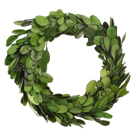 Fake Boxwood Wreath (Creative Co Op  6in Round Preserved Boxwood)