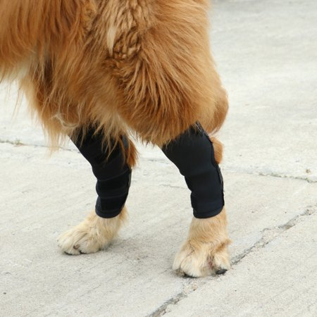 Dog Knee Brace For Torn Acl Hind Back Leg Dog Canine Protector Rear Leg Hock Joint Wrap Protects Compression Sleeves For Injury And Sprain Protection ()