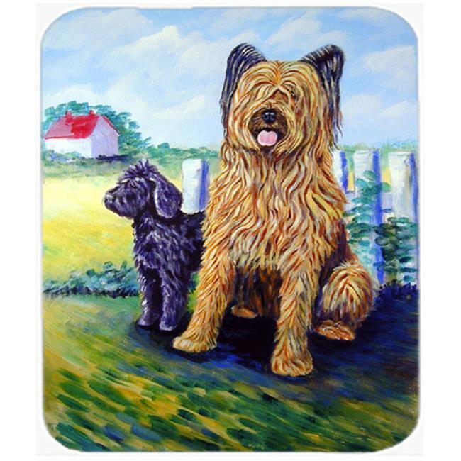 9.5 x 8 in. Briard Training Day for the Puppy Mouse Pad, Hot Pad or Trivet