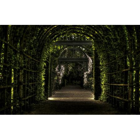 LAMINATED POSTER Garden Leaves Arches Prinsentuin Vines Poster Print 24 x - Halloween Vine Arch