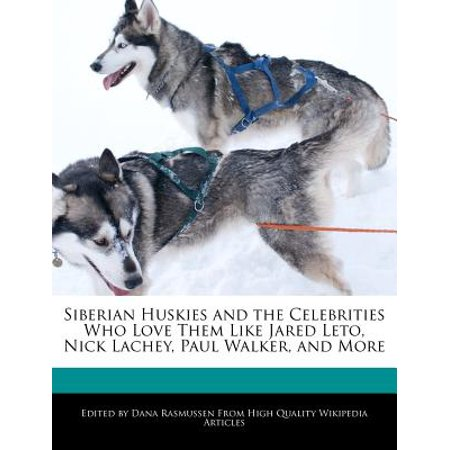 Siberian Huskies and the Celebrities Who Love Them Like Jared Leto, Nick Lachey, Paul Walker, and More
