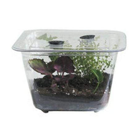 Hubbard Scientific Student Aquarium/Terrarium - 1 1/2 Gallon - Plastic