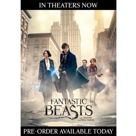 Fantastic Beasts And Where To Find Them  Blu Ray   Dvd   Digital Hd