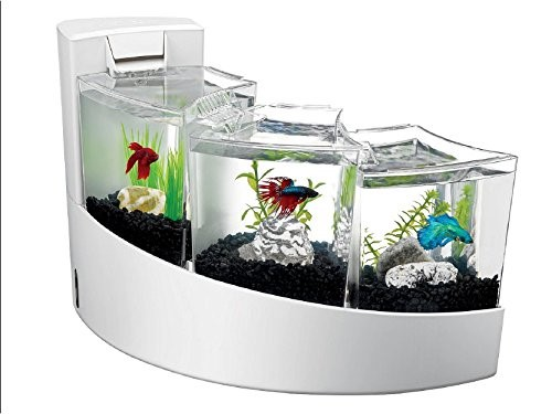 Aqueon Betta Falls Aquarium, White by All Glass Aquarium Co. Inc