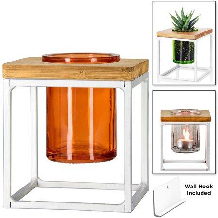 bec715db567d Couronne Co. Coastal Pablo Cube Desktop or Hanging Planter Vase ...