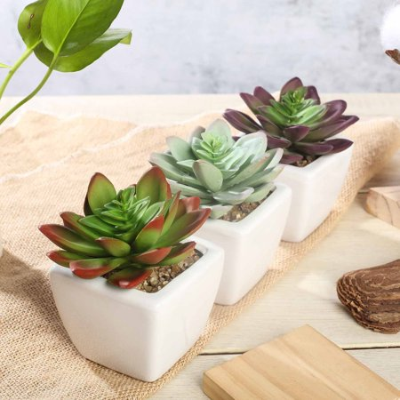 "Efavormart Set of 3 | 4"" Assorted Faux Succulent Mini Green Plant In White Ceramic Pot ()"