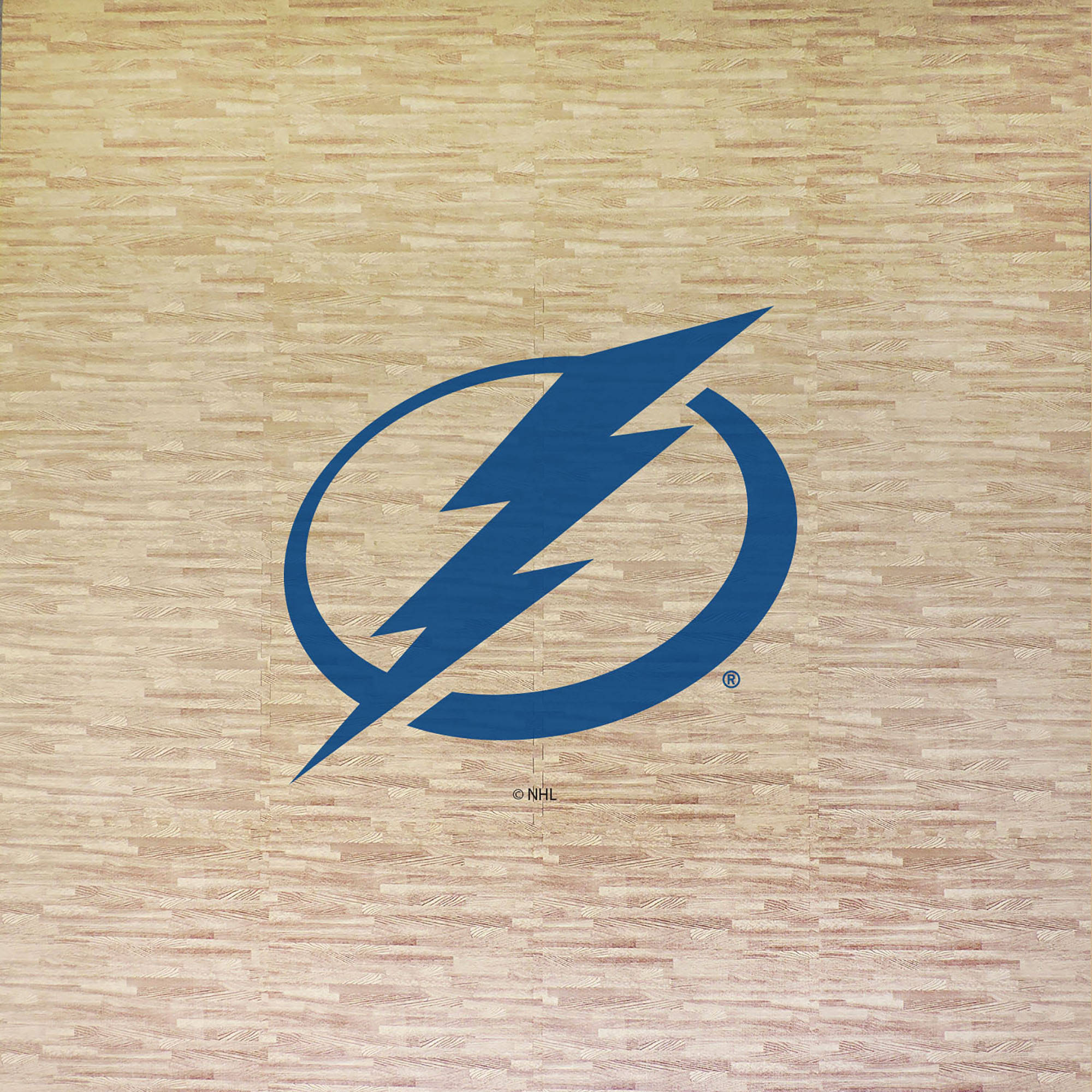 NHL Tampa Bay Lightning Portable Foam Puzzle Tailgate Floor Mat by