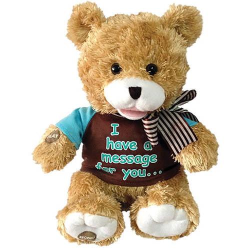 Recordable Teddy Bear Walmart, Chantilly Lane Record A Voice Bear Message Bear Walmart Com Walmart Com