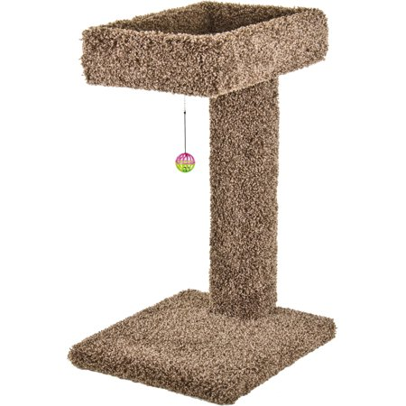 Ware Mfg. Inc. Dog/cat-Kitty Cactus With Toy- Natural 15 X 17 X 28 In
