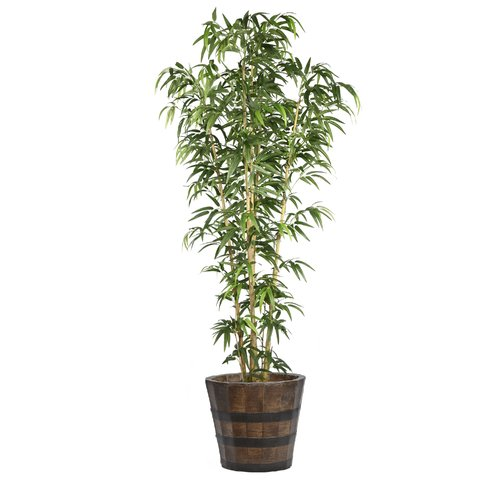 Wildon Home  Bamboo Tree in Planter