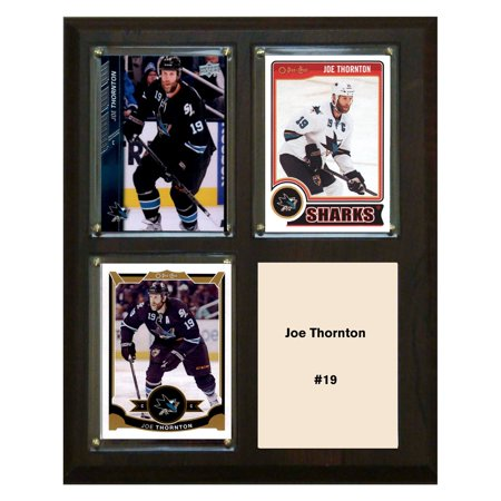 C & I Collectables NHL 8