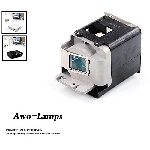 FX.PM484-2401 with Generic Housing Fit for OPTOMA X501 W501 EH501 EW420 HD151X HD36 AWO Original Projector Replacement Lamp Bulb BL-FU310A