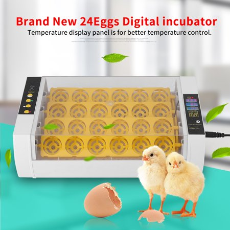 VBESTLIFE Incubator Hatcher,24 Eggs Incubator Temperature Control Digital Automatic Chicken Chick Duck Hatcher Incubator