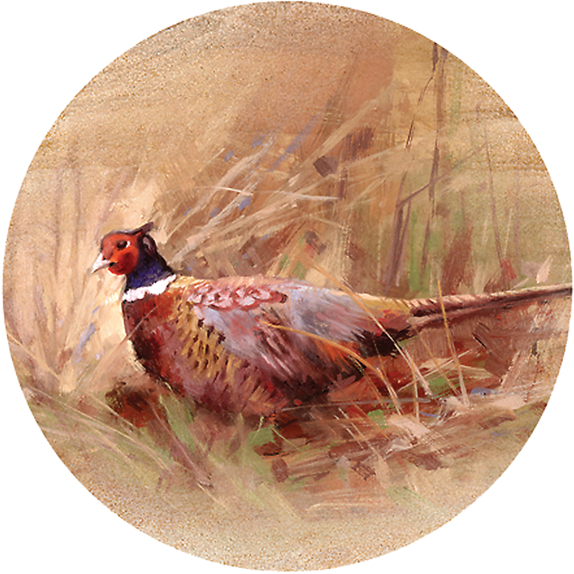Thirstystone Drink Coasters Set, Pheasant