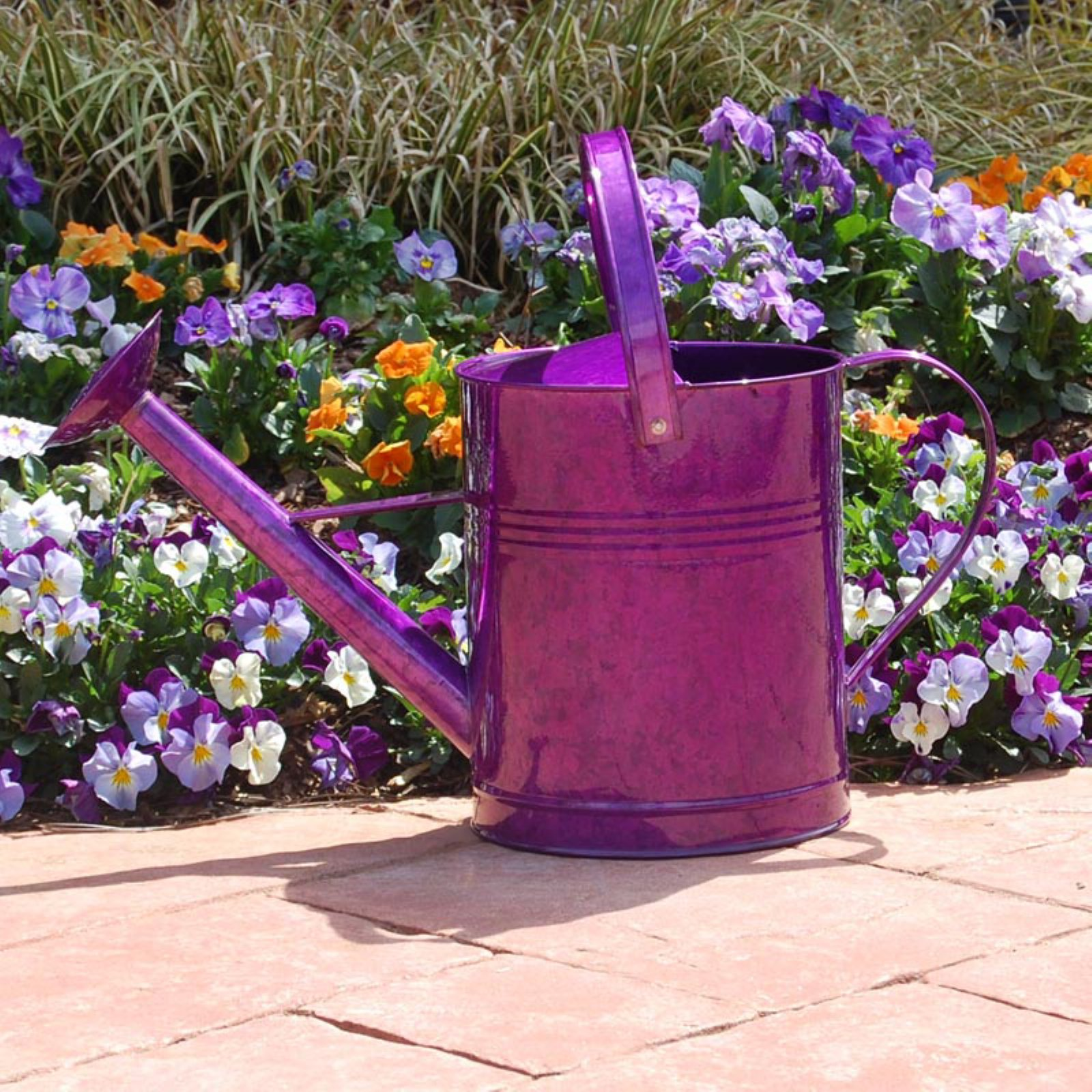 Austram-Griffith Creek Designs Metal Watering Can