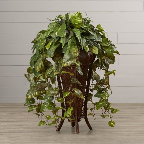 Darby Home Co Kell Woode Vining Mixed Floor Plant In Decorative Vase