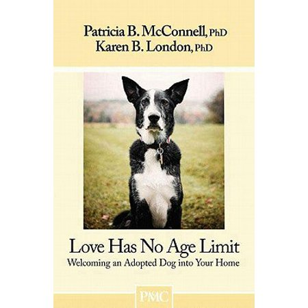 Love Has No Age Limit : Welcoming an Adopted Dog Into Your