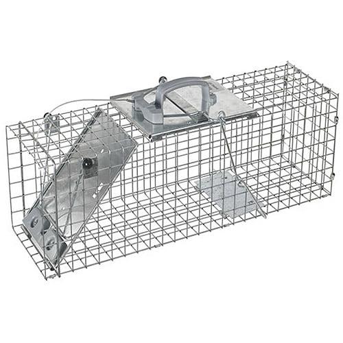 Havahart Medium 1-Door Collapsible Easy Set Trap