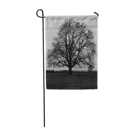 KDAGR Dead Silhouette of Bare Oak Tree in Black and White Garden Flag Decorative Flag House Banner 12x18 inch - Bare Tree Silhouette Halloween