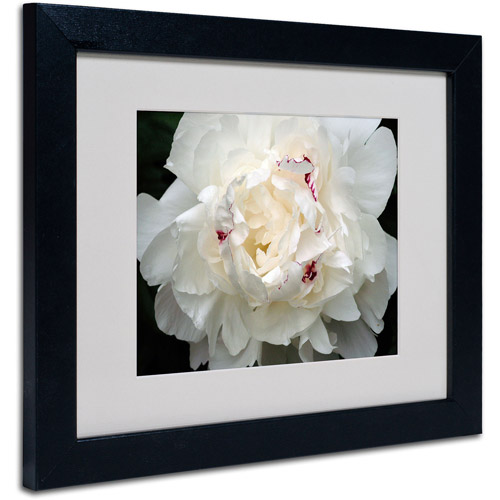 Trademark Art 'Perfect Peony' Framed Matted Art by Kurt Shaffer