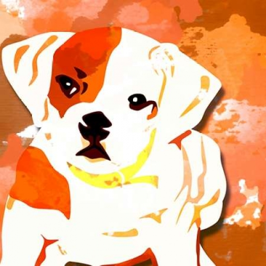 Dog in Color 2 Poster Print by  Kimberly Allen