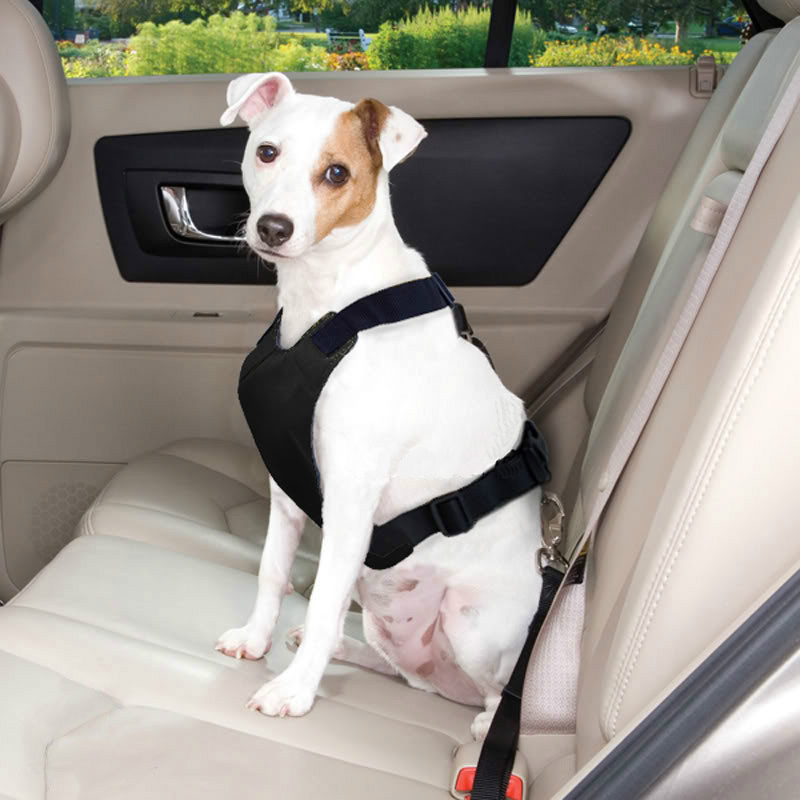Adjustable Pet Car Seat Belt [Black] Keep Your Dog Safely Restrained While Driving!