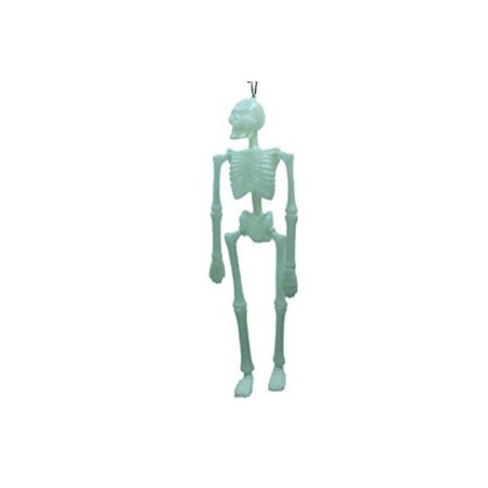 16 inch plastic glow in the dark hanging halloween skeletons scary (pack of