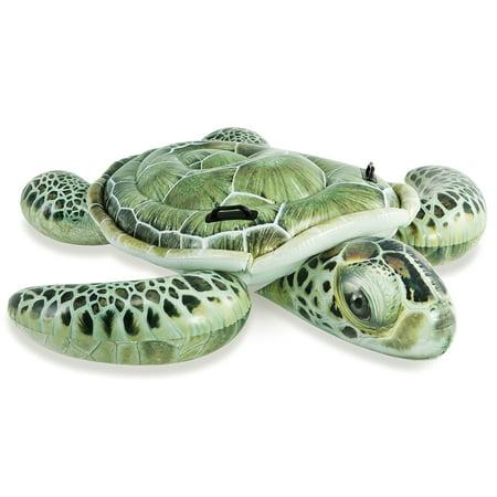 Intex 6' Sea Turtle Ride-On Inflatable Float - Realistic Print