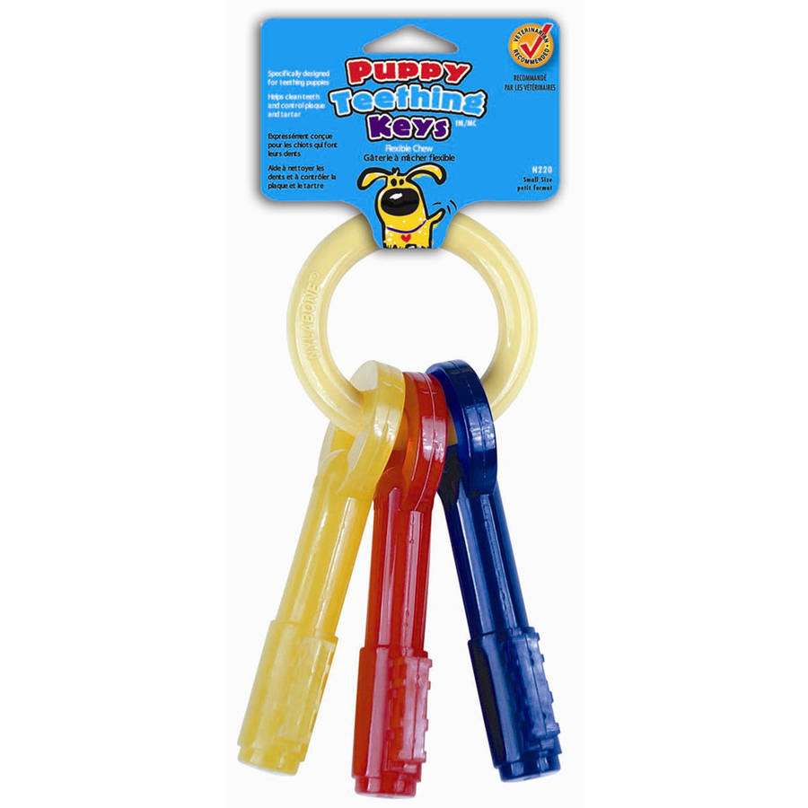 Nylabone N220 Puppy Teething Keys Dog Toy