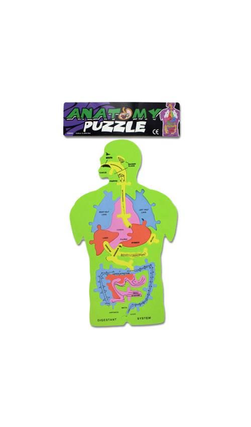 Anatomy Foam Puzzle Set of 24 by Kole Imports